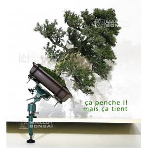 table-orientable-pour-bonsai