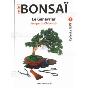 Mini bonsai N°2 genevrier shinpaku Kyosuke Gun