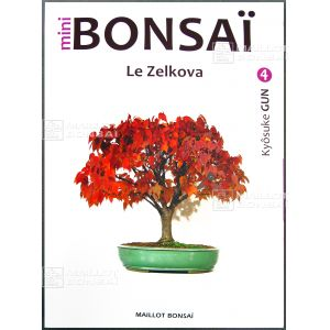 Mini bonsai N°4  le zelkova K. Gun