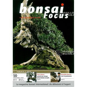 BONSAI FOCUS N° 50