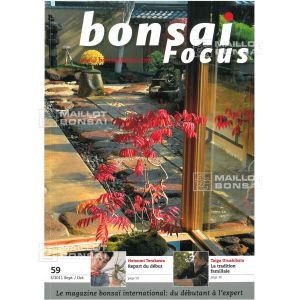 bonsai-focus-n-59