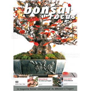 BONSAI FOCUS N° 60