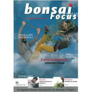 bonsai-focus-n-61