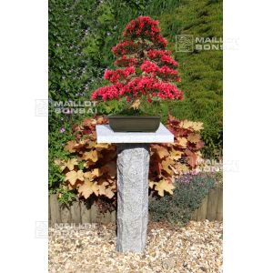 Bonsai granite stand 160 cm