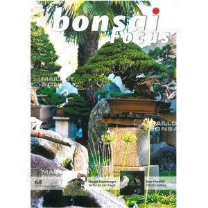 bonsai focus N° 68