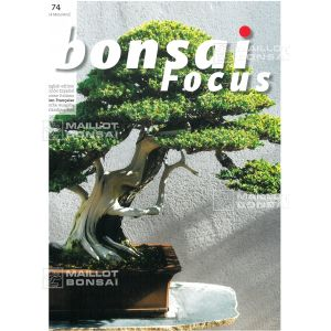 bonsai-focus-n-74