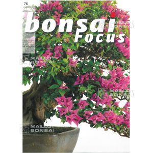 BONSAI FOCUS N°76