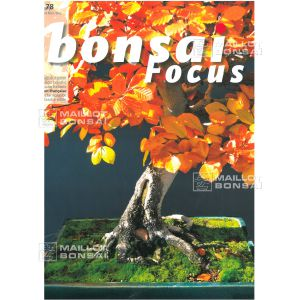 bonsai-focus-n-78
