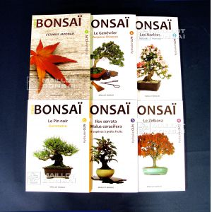 mini-bonsai-lot-de-6-livres