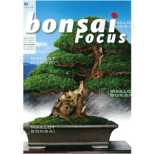bonsai-focus-n-82
