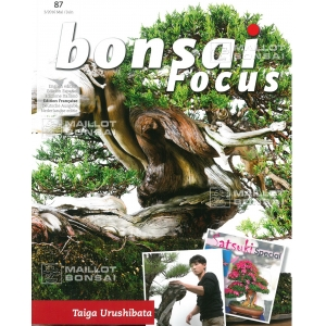 bonsai-focus-n-87