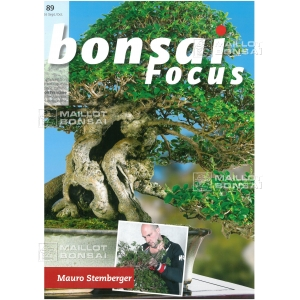 bonsai-focus-n-89