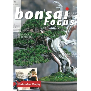 BONSAI FOCUS N° 92