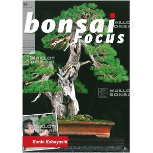 bonsai-focus-n-93