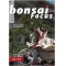 bonsai-focus-n-106