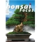 BONSAI FOCUS N° 82