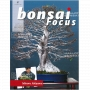 bonsai-focus-n-97