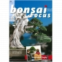 BONSAI FOCUS N° 99