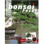 BONSAI FOCUS N° 100