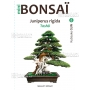 mini-bonsai-juniperus-rigida-handbook-n-8