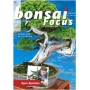 BONSAI FOCUS N° 90
