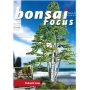 BONSAI FOCUS N° 91