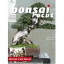 bonsai-focus-n-95
